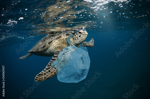 Tuinposter Schildpad Underwater global problem with plastic rubbish