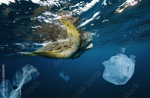 Poster Tortue Underwater global problem with plastic rubbish