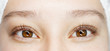 Leinwanddruck Bild - Close up view of beautiful female brown eyes with long natural lashes. Eyelash extension procedure. Natural eyebrows. Good vision, contact lenses. Eye health care.