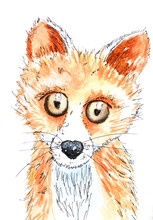 Fox Painted With Watercolors On A White Background. Ideal For Children's Clothing. Print For T-shirts, Prints, Art, Fabrics, Clothing.