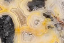 Crazy Lace Agate Closeup