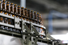 Brewery: Empty Bottles Move Through Production Bottling Line