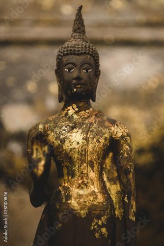 In de dag Historisch mon. buddha