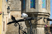 White Dove On The Fountain In The Center Of The Old Town Of Rhodes.