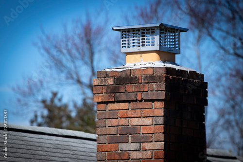 Valokuvatapetti Chimney cap installed to prevent rodent entry to home/attic/building