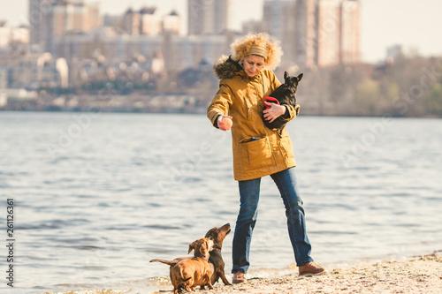 Fotografie, Tablou  Subject lot pets, dog lover on walk