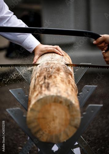 Fotografia, Obraz  sawing a big piece of wood