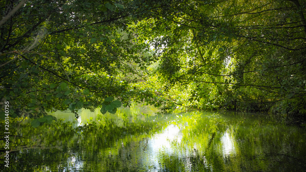 Fototapety, obrazy: Green river Voiselle in marshes in Bourges, France