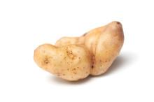 Closeup Of Deformed Potato On ...