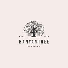 Banyan Tree Logo Vector Icon I...