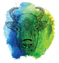 Head Of American Bison.The Cow's Head. A Cow With Big Horns And Fluffy Ears. Drawing Manually In Vintage Style. Meditative Coloring. Coloring For Children. Arrows, Points, Patterns, Waves.