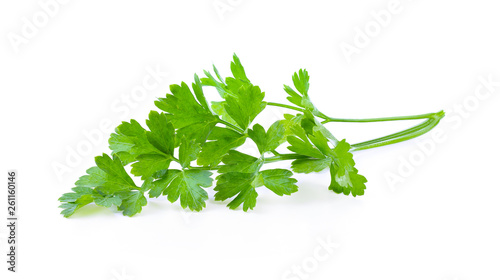 Pinturas sobre lienzo  Parsley isolated on a white background