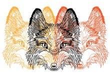 Head Of A Fox. Meditation, Coloring Of The Mandala. Fluffy Face With Large Ears. Drawing Manually, Templates. Strips, Points, Arrows. Spots Of Paint, Spray.