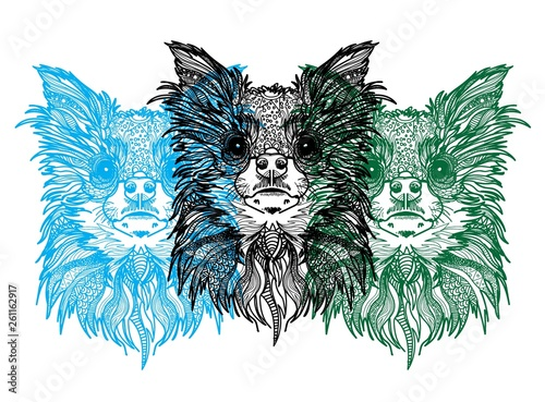 Poster Croquis dessinés à la main des animaux The head of a Chihuahua dog. Meditation, coloring of the mandala.