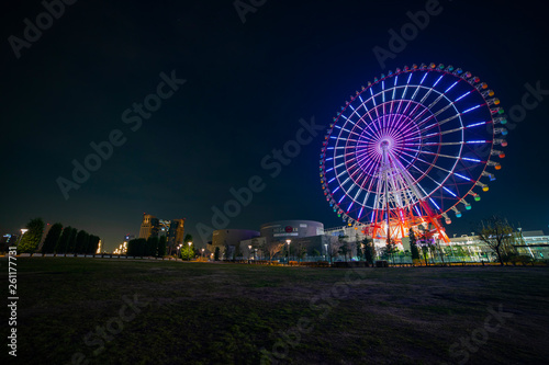 Spoed Fotobehang Amusementspark Ferris wheel at night in the amusement park