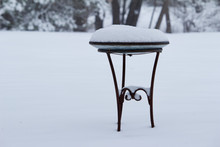Metal Birdbath Covered In Snow...