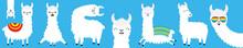 Llama Alpaca Big Line Set. Fac...