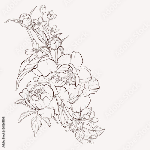 Vector peony flower isolated on white background Wallpaper Mural