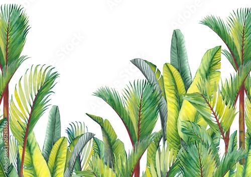 tropikalne-palmy-i-liscie-bananow