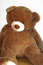 Large And Thick Teddy Bear Sit...