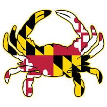 Maryland Flag Crab Isolated Ve...