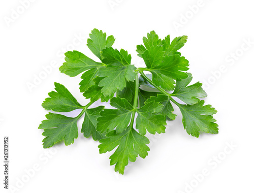 Foto  parsley isolated on white background. full depth of field