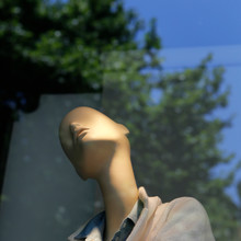 Mannequin In A Shop Window And Reflection Of A Tree