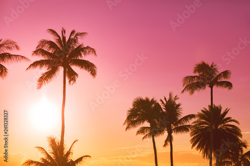 In de dag Palm boom Palm tree silhouette on a background of tropical sunset