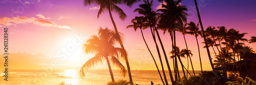 Fototapeta Palm tree silhouette on a background of tropical sunset obraz