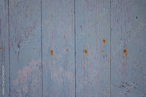 Old paint blue wooden background with nails