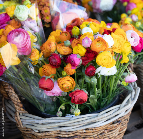 Basket of colorful persian buttercup flowers or Ranunculus asiaticus bouquets in the flowers shop.