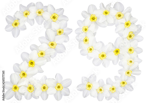 Wall Murals Plumeria Numeral 29, twenty nine, from natural white flowers of Daffodil (narcissus), isolated on white background
