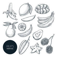 Bananas And Other Tropical Exotic Fruits. Vector Sketch Illustration. Hand Drawn Design Elements And Icons Set