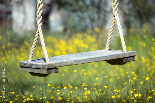 Tree Swing Closeup With Yellow Wildflowers in Spring - Sierra Nevada, California