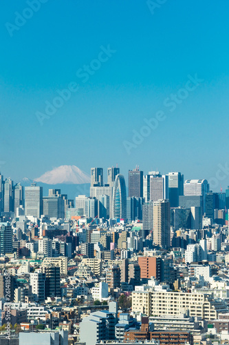 Photo  Tokyo skyline with mountain Fuji