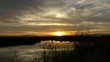 Amazing sunset in sloughs. Nature in marshlands with sunset reflecting off