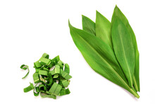 Set Of Fresh Whole Leaves Of W...