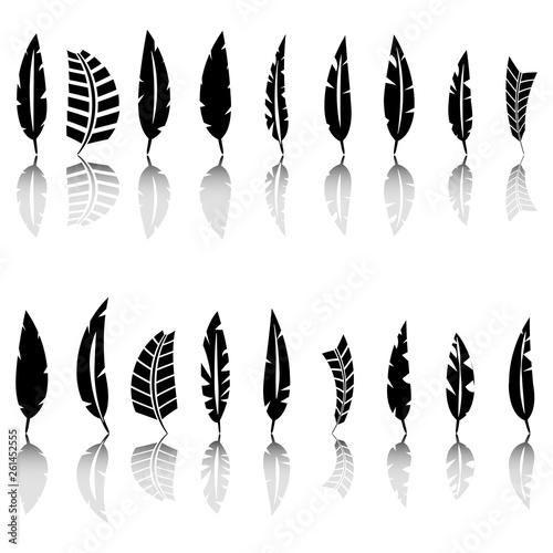 Set of bird feathers, vector illustration. Wallpaper Mural