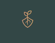 Abstract Logo Icon Plant Roots...