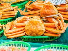Snow Crab In A Fish Market