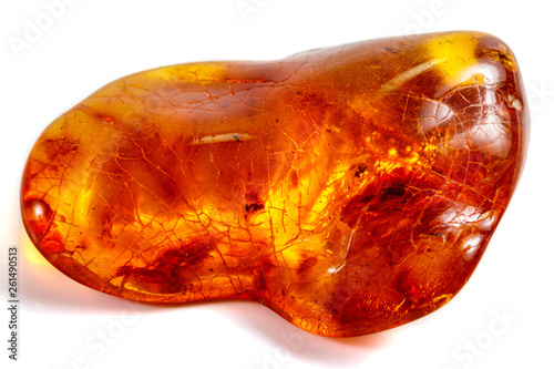 Fototapeta Macro stone mineral amber with insects, flies and beetles on a white background