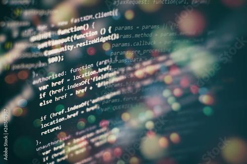 Cuadros en Lienzo Closeup developing programming and coding technologies