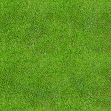 Seamless Green Lush Grass Text...