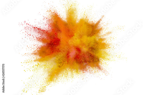 Colored powder explosion on white background Canvas