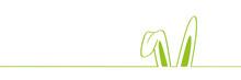 Green Rabbit Ears Border On White Background Easter Design Vector Illustration EPS10