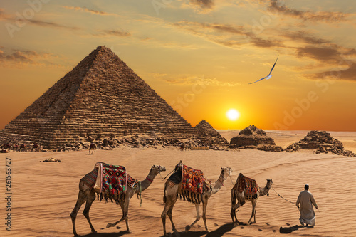 Poster Chameau The Pyramid of Menkaure and the three pyramid companions, the camels and the bedouins in the desert