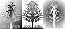 Illustration Of A Stylized Silhouette Of A Tree In Different Colors