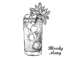 Bloody Mary Cocktail Hand Drawn.