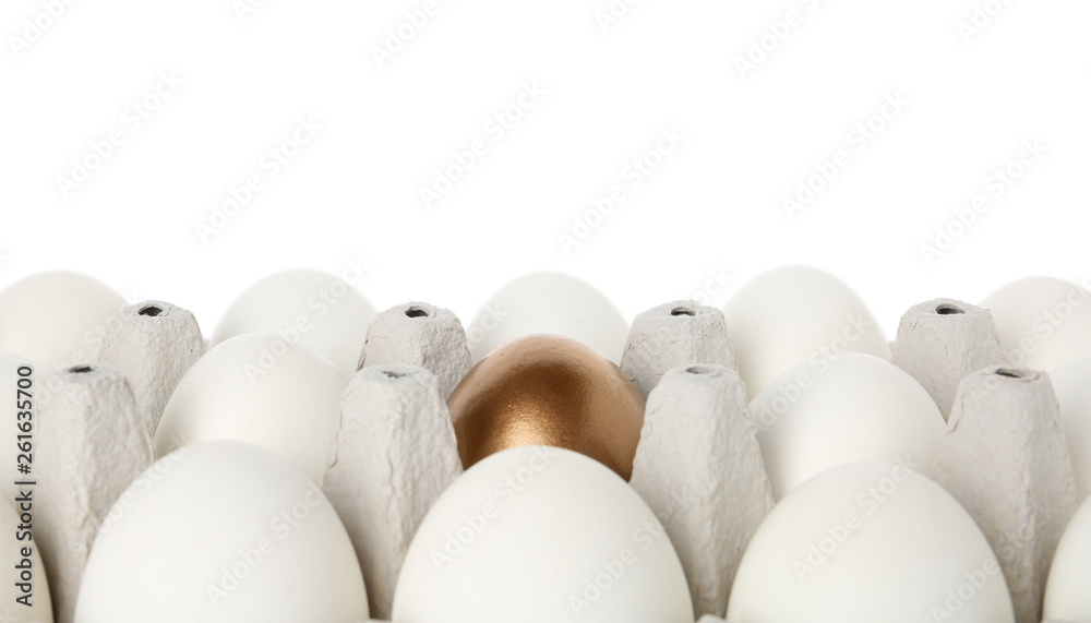 Fototapety, obrazy: Egg carton with golden egg among ordinary ones on white background