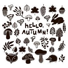 Hello, Autumn!1